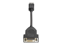 HP DisplayPort / DVI-D DisplayPort DVI-D Black cable interface/gender adapter