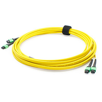 Add-On Computer Peripherals (ACP) 1m 2xMPO/2xMPO 1m MPO/MTP MPO/MTP Yellow fiber optic cable