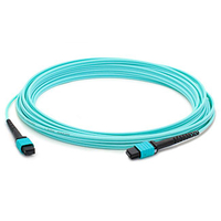 Add-On Computer Peripherals (ACP) 30m MPO/MPO 30m MPO/MTP MPO/MTP Turquoise fiber optic cable