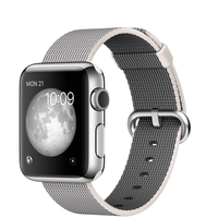 "Apple Watch 1.32"" OLED Stainless steel smartwatch"