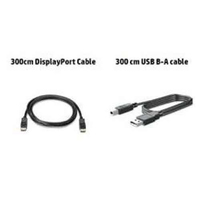 HP 300cm DP & USB B-A Cable 3m DisplayPort DisplayPort Black
