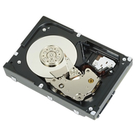 DELL 400-ALUO 1000GB NL-SAS hard disk drive