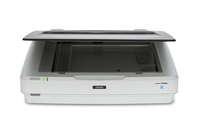 Epson 12000XL Flatbed scanner 2400 x 4800DPI A3 White