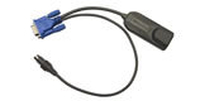 Raritan Computer Interface Module Black cable interface/gender adapter
