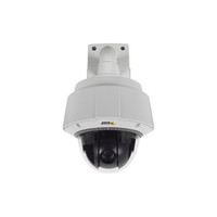 Axis Q6044 Indoor & outdoor Dome White