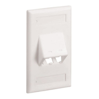 Panduit CFPSL2EIY Ivory switch plate/outlet cover