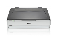 Epson Expression 12000XL Flatbed scanner 2400 x 4800DPI A3 Grijs, Wit