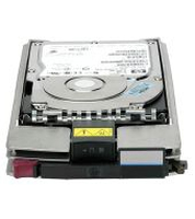 Hewlett Packard Enterprise 364622R-B22 300GB fiber Channel hard disk drive