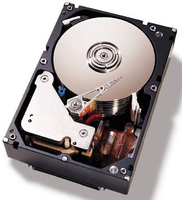 "IBM 500GB SATA 3.5"" 500GB Serial ATA III hard disk drive"
