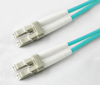 Add-On Computer Peripherals (ACP) LC/LC 30m 30m LC LC Blue fiber optic cable
