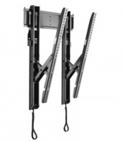 Chief Thinstall Universal Tilt Wall Mount Black