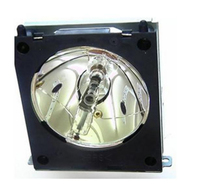 eReplacements DT01091-ER projection lamp