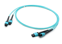Add-On Computer Peripherals (ACP) ADD-TC-25M24-2MPF4 25m MPO/MTP MPO/MTP Blue fiber optic cable