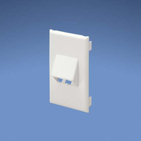 Panduit T70FV2WH White switch plate/outlet cover