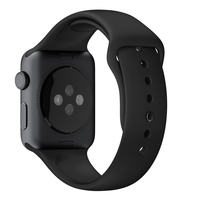 Apple MJ4N2ZM/A Band Zwart Fluorelastomeer smartwatch-accessoire