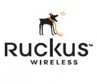 Ruckus Wireless ZoneDirector 1000 License Upgrade (6>12)