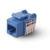 Belkin Category 6 RJ45 Jack - Blue Blue network splitter