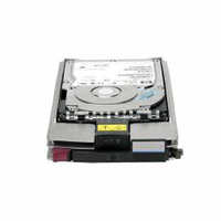 Hewlett Packard Enterprise StorageWorks EVA 300GB 15K FC Add on HDD 300GB fiber Channel hard disk drive